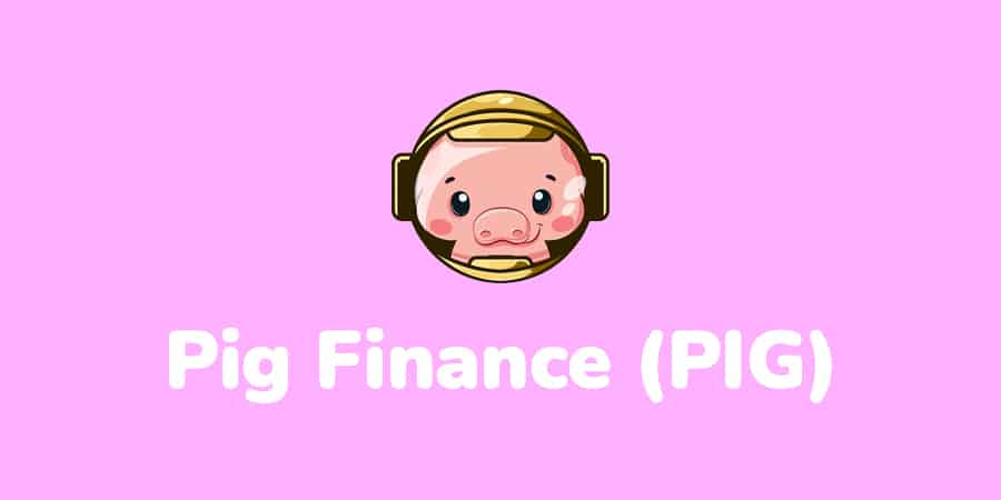 pig finance